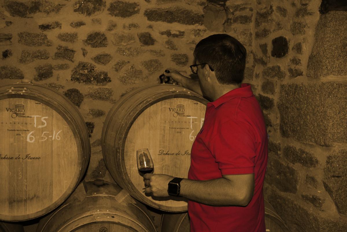 vinos a la carta vinologica
